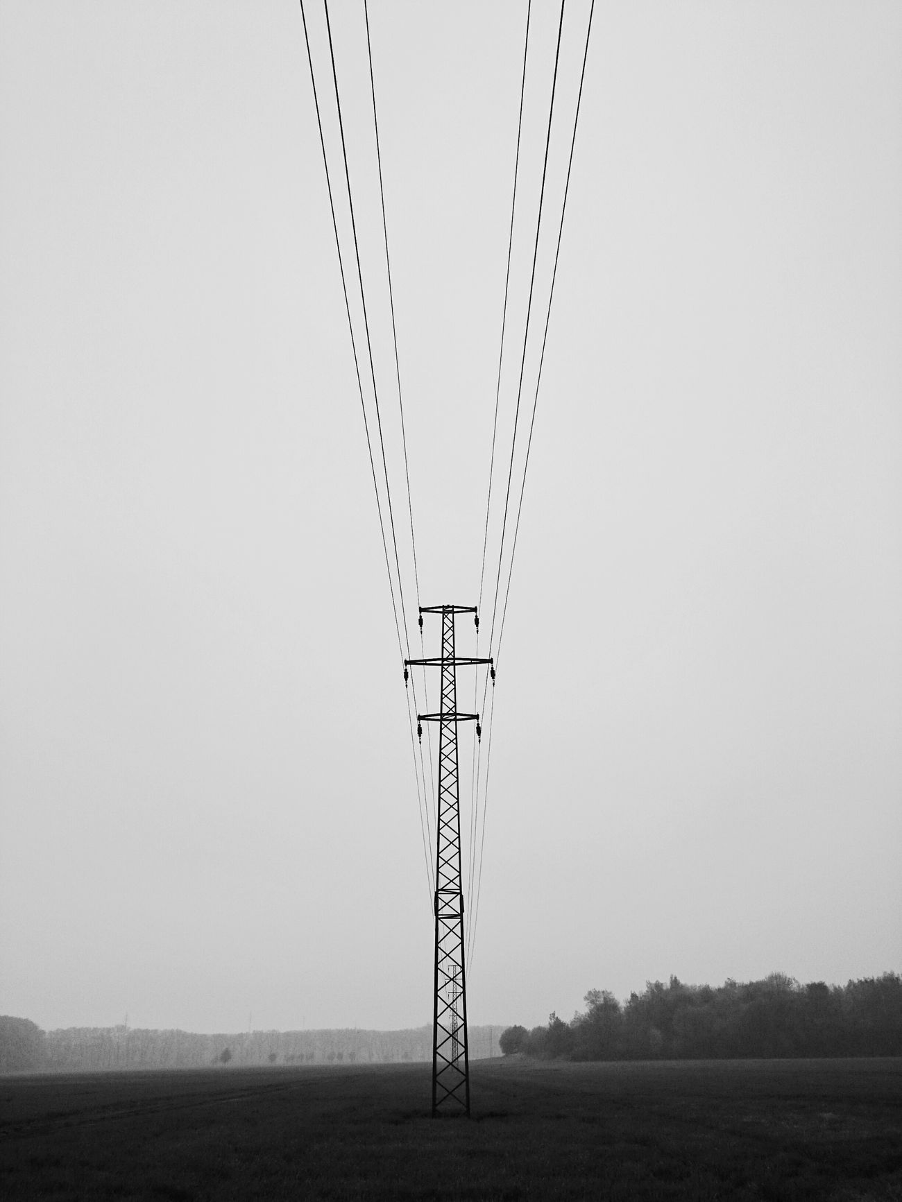 Blackandwhite Photography Bnw_captures Bnw_collection Cable Clear Sky Electricity  Electricity Pylon EyeEm Best Shots EyeEm Best Shots - Black + White EyeEm Black&white! EyeEm Gallery Field Foggy Day Foggy Morning Landscape Lineart Minimalobsession Moody Weather No People Outdoors Symmetry Symmetryporn XPERIA Xperiaphotography