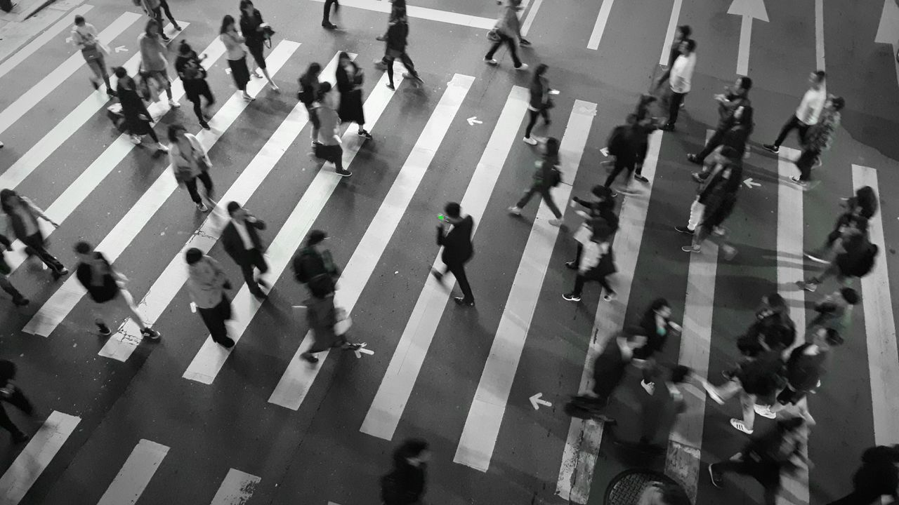 Zebra Crossing Crosswalk City Crossing City Street City Life High Angle View Group Of People Watch Out! Black & White Black & White Photography