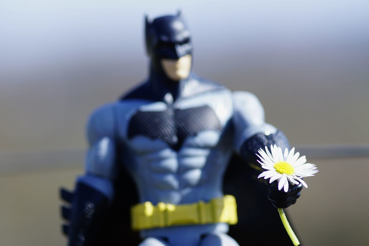 One Man Only Front View Comic Heroes Batman Have A Nice Day♥ Hello World Dark Knight Daisy 🌼 Outdoors