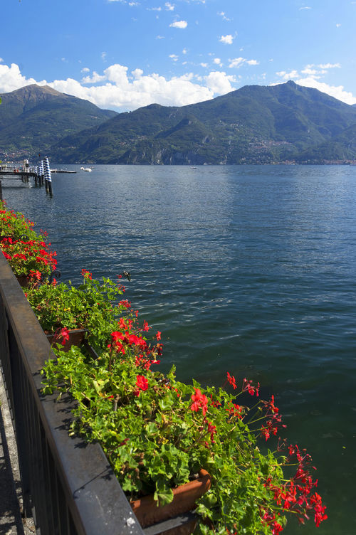 Pentax Como Como Lake Europe Italy Lake Landscape Landscape_Collection Landscape_photography Luxurious Luxury Menaggio Menaggio Lake Como Lakecomo Resort Travel Travel Photography Vila