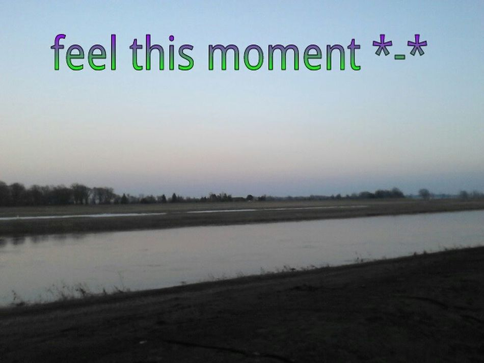 Feel This Moment *-*