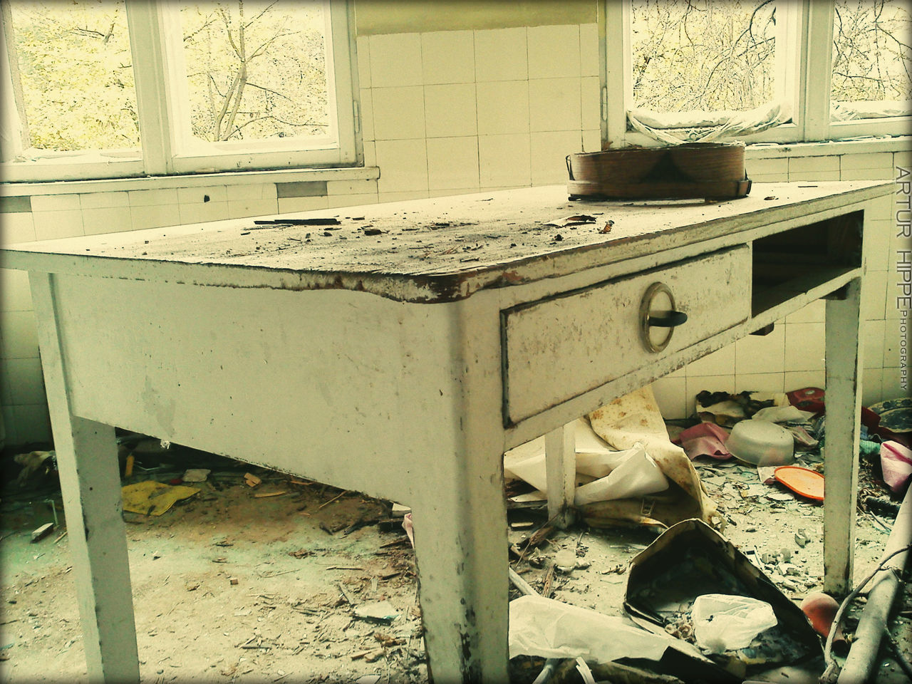 domestic kitchen, kitchen, domestic room, messy, abandoned, no people, indoors, damaged, stove, home interior, day, cabinet, mammal, animal themes