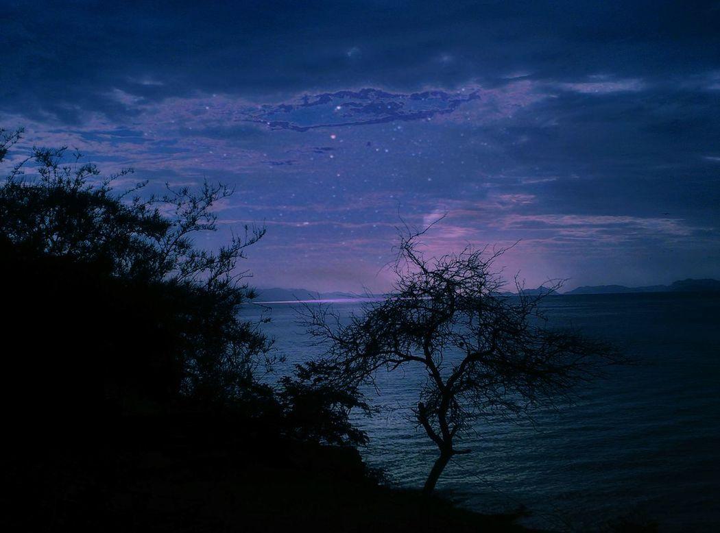Taking Photos Night Lights