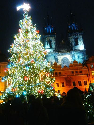 Christmas Tree Outdoors In Prague Old Street Night