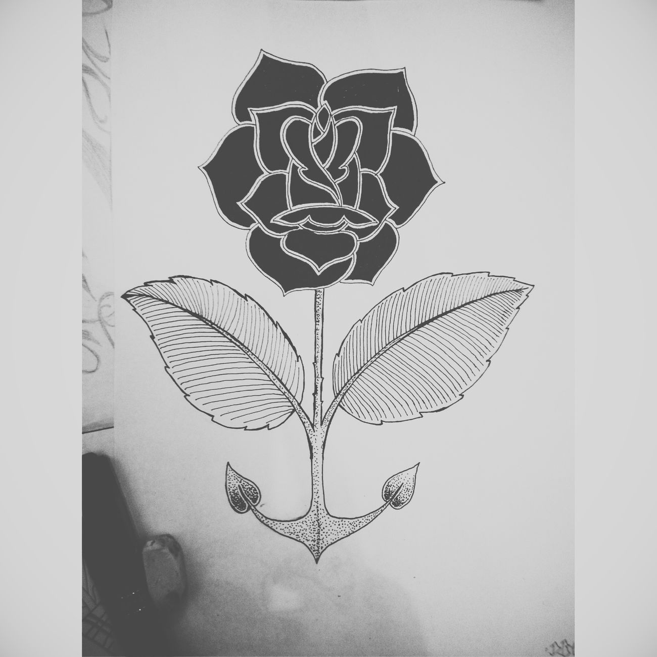 Flashart Draw My Drawing A Rose #fenirose :)