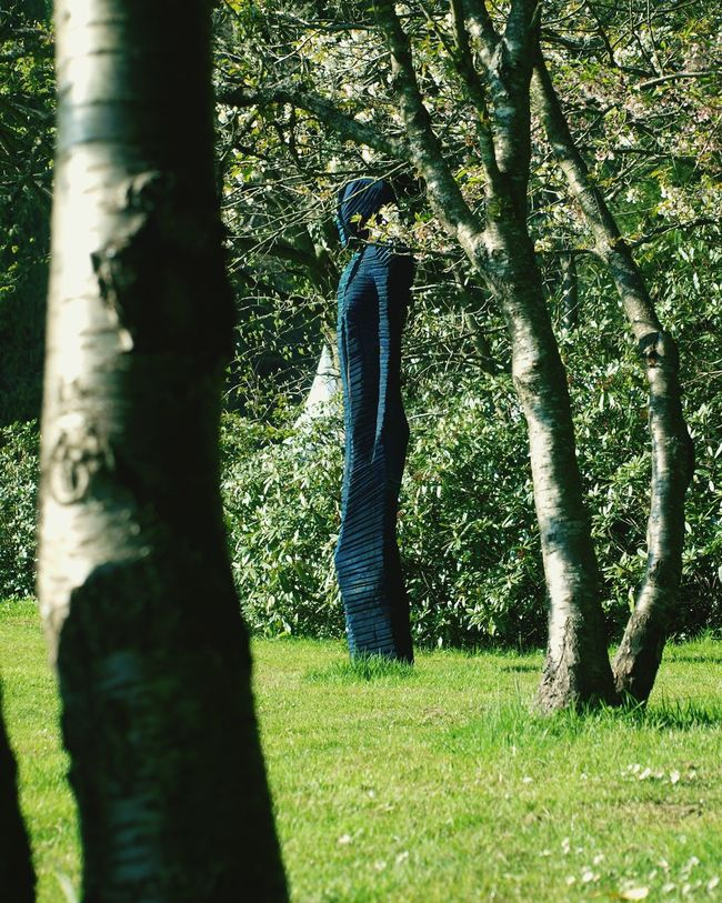 Blue Person Sculpture Trees Grass Lawn Art Work Of Art Carving Carved In Wood