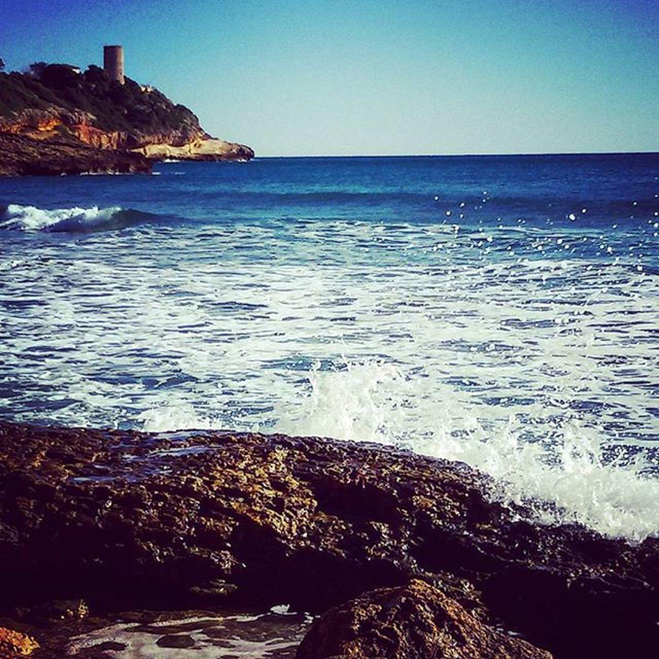Raconsde_catalunya Boscdelamarquesa Puntadelamora Tarragona Tgnturisme Tgn Tarragona2016 Descobreixcatalunya Descobreixtarragona Raconsde_tarragona