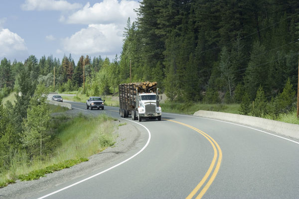 Logging truck and cars moving on highway 18 - British Columbia, Canada Canada Dead Tree Deforestation Environment Environmental Issues Forestry Industry Fossil Fuel Freight Transportation Front View Fuel And Power Generation Highway Highways&Freeways Land Vehicle Logging Truck Lumber Industry Mode Of Transport Nature Road Semi-truck The Way Forward Transportation Tree Tree Trunk Truck Wood - Material