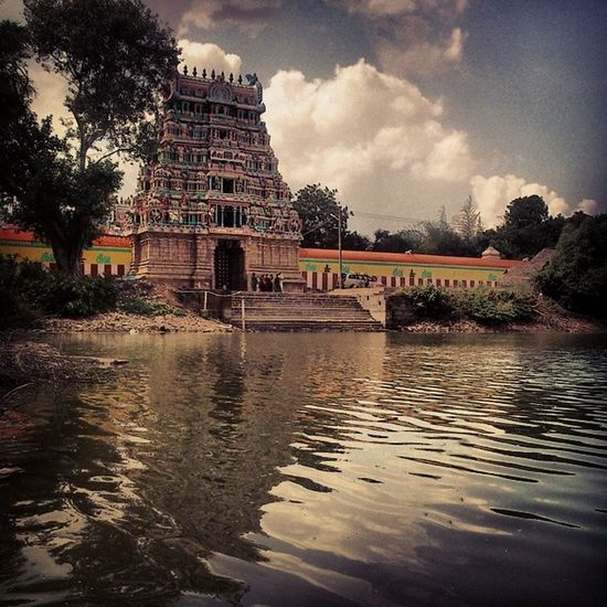 Rurals College Village SiteStudy Temple Pond