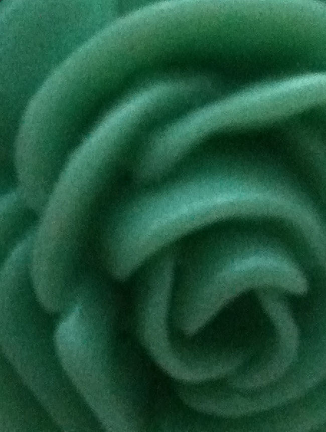 Mint Rose Backgrounds Close-up Extreme Close-up Floral Flower Full Frame Green Green Color Macro Macro Photography Mint Green Plastic Selective Focus