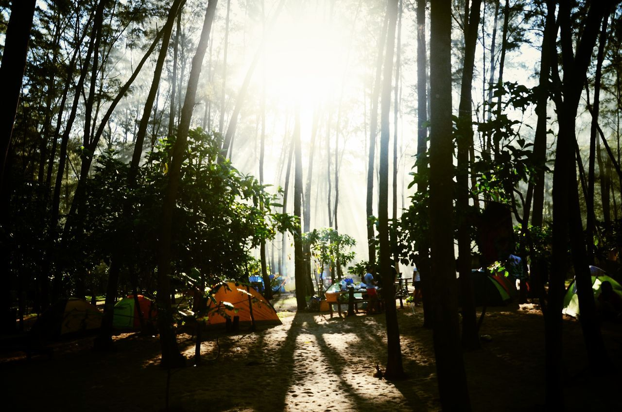 Outdoor Adventure.. Anawangin Beachlife Beach Camping Eyeem Philippines