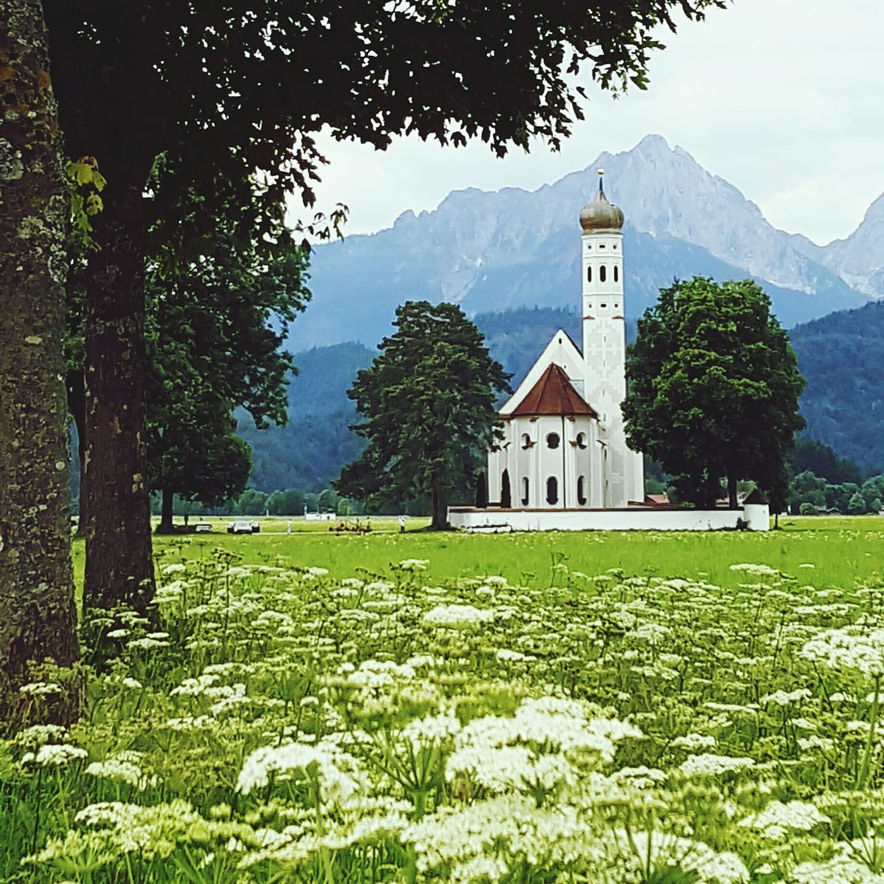 Taking Photos Relaxing Mountains Baviera Nature Church Newschwanstein