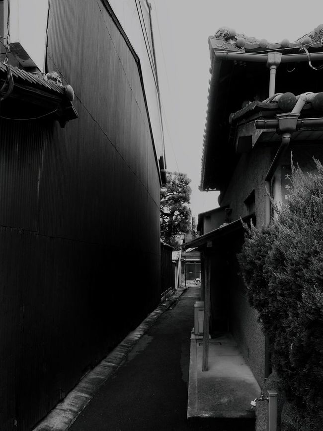 Japan Photography Japanese Style Japanese Traditional Old House Alley Architecture Trees Building Exterior Wall Monochrome Photography From My Point Of View Light And Shadow Still Life The Way Forward Street Photography Streetphotography The Important Thing Is To Participateなんちゃってmission No People Quiet Places Black And White Blackandwhite Eye4photography  EyeEm Best Shots - Black + White VSCO in Osaka, Japan