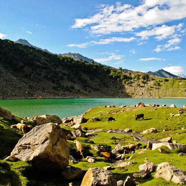 Bg_shots @bg_shots Bestnatureshot Bns_family Bns_pakistan bns_landscape ig_shotz_landscape ig_pakistan igbest_shotz ig_pakistan