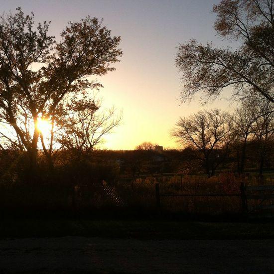 Sunset Sun Iowa Farm