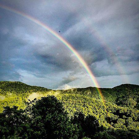A Double Rainbow over the Mountains Rainbow Trees
