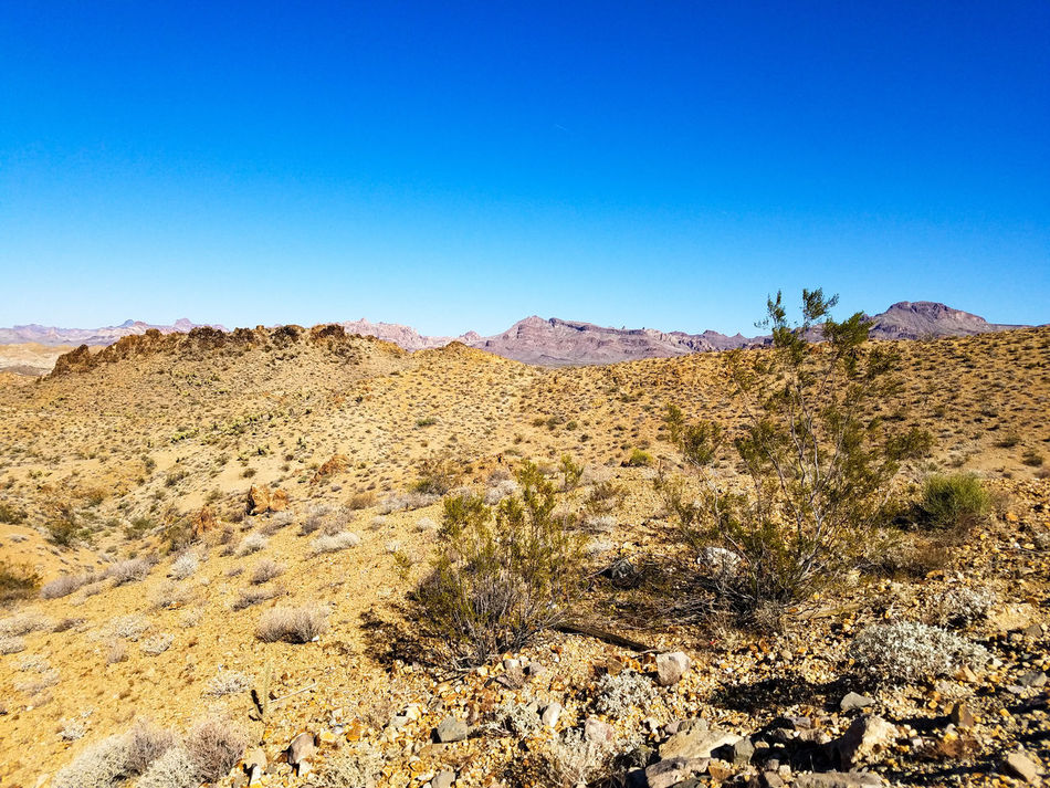 Clear Sky Sky No People Nature Landscape Outdoors Beauty In Nature Day Desert Scenics Mountain Arizona Landscape Arizona USA Mountains Dry Gravel Along The Road Travel Explore Adventure Rocks Rocky Plants Blue