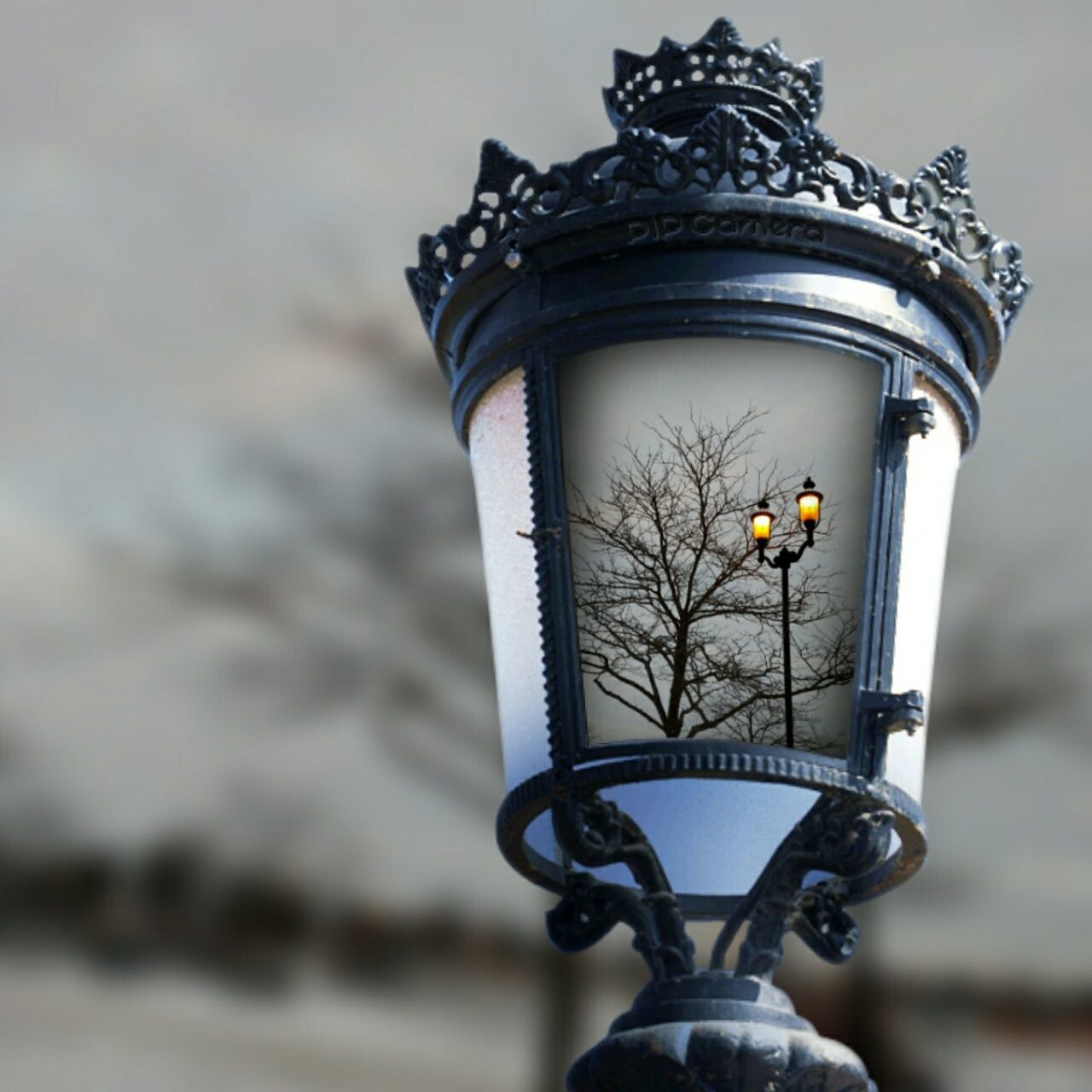 This Is My Art!!! Getting Inspired Getting Creative Bare Branches Lantern Winter Sky Amber Light From My Point Of View Things I Saw Today Showcase: January East Liverpool Ohio, USA My Hometown Point Of View