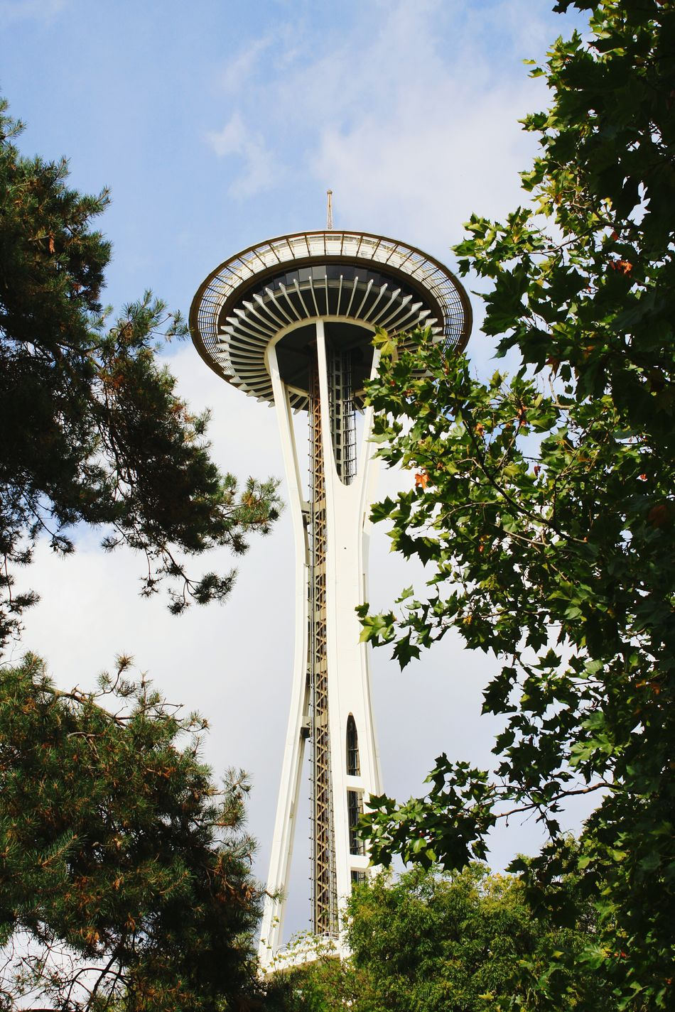 Space Needle Seattle, Washington Sky Tree Outdoors No People Building And Sky Through Trees Tourist Destination Tourist Attraction