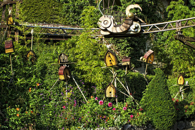 Beauty In Nature Birdhouse Day Formal Garden Green Color Growing Growth Nature No People Non-urban Scene Outdoors Phantasialand Plant Scenics Tranquil Scene Tranquility Vogelhaus
