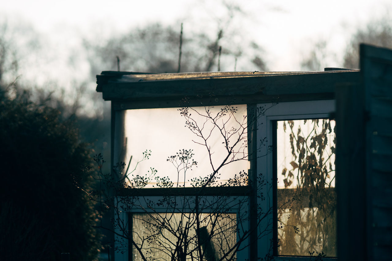 garden view Architecture Bare Tree Day Nature No People Outdoors Sky Tree Window