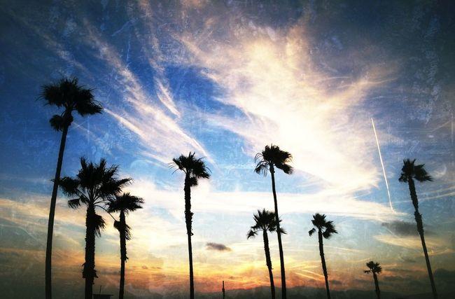 AMPt_community NEM Landscapes LA Sunset EyeEm Best Shots - Landscape