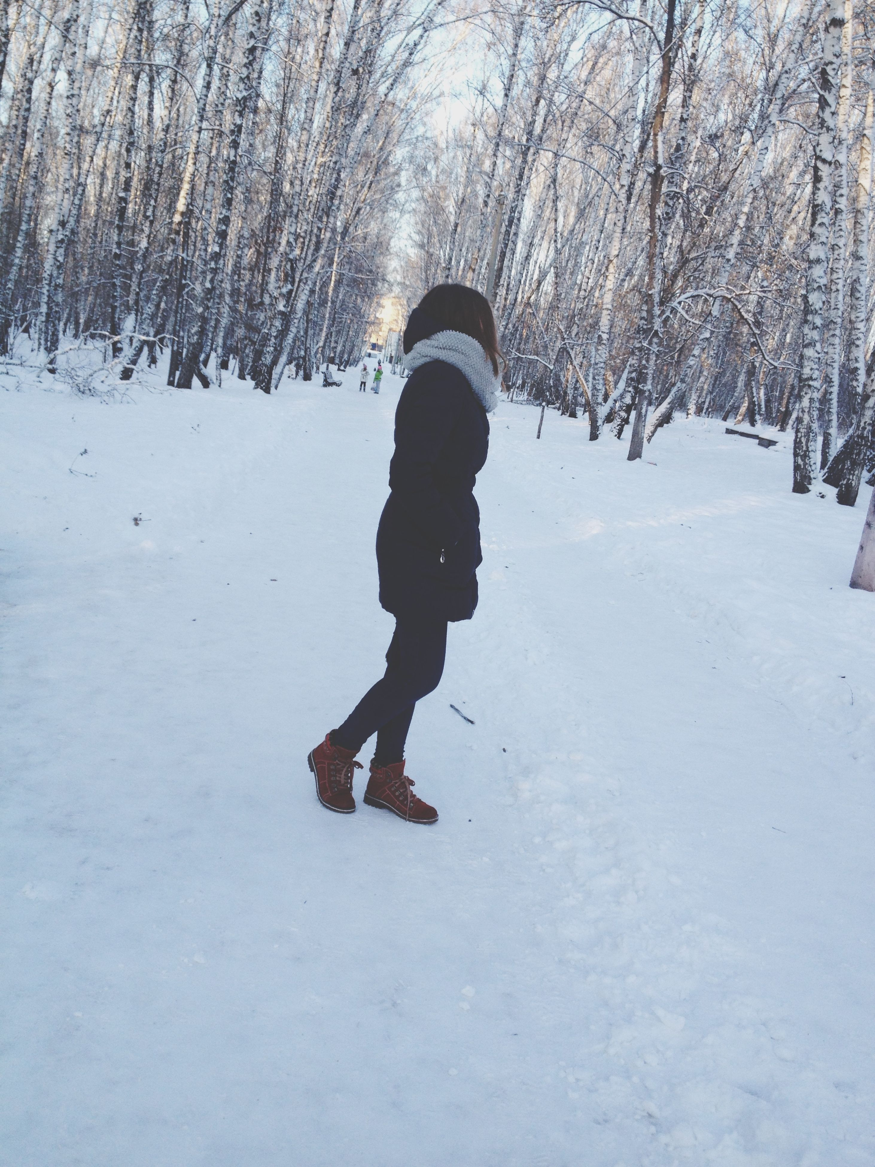 winter, snow, cold temperature, season, tree, weather, full length, lifestyles, warm clothing, leisure activity, covering, forest, nature, walking, rear view, tranquility, white color, covered