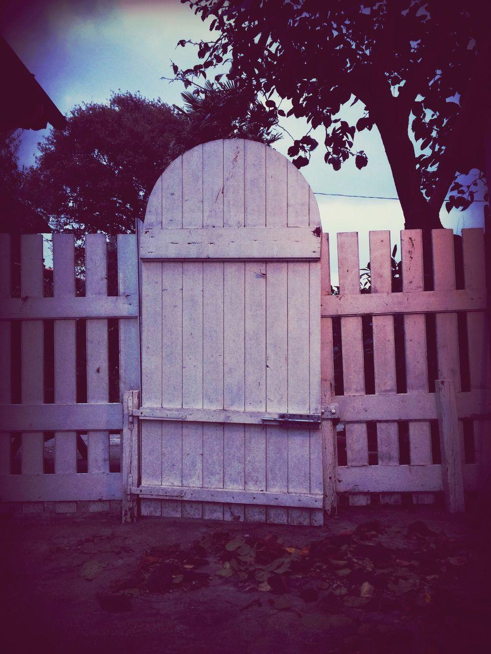 Arch Door In Yard