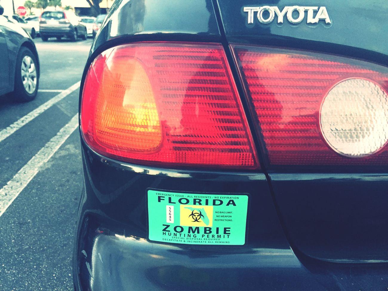 Florida Zombie Permit 2014
