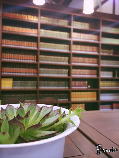 Nature Books Plant Relaxing in a Buddhism library,Hangzhou,China .
