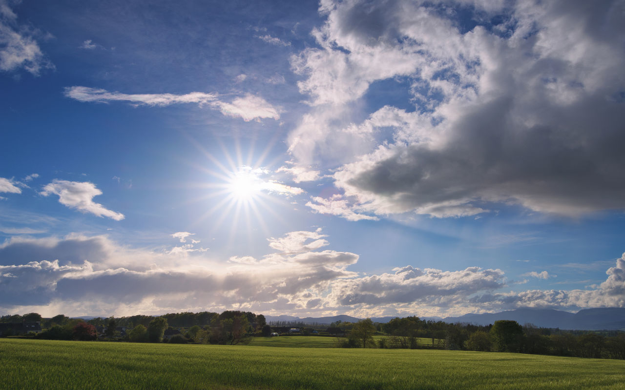 sky, sunbeam, sun, beauty in nature, nature, sunlight, field, tranquil scene, scenics, tranquility, cloud - sky, idyllic, landscape, grass, no people, day, outdoors, tree, growth
