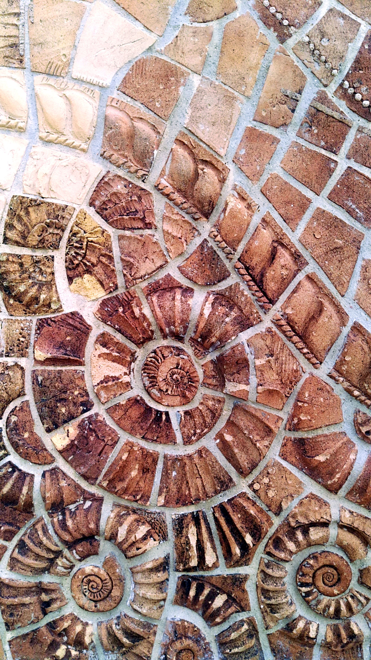 Art Beach Close-up Day Full Frame Monument No People Outdoors Pattern Red Relief Sculpture Sea Shell Stone