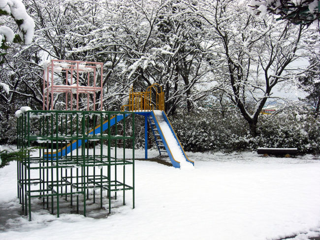 Beauty In Nature Chute Jungle Gym Nature Outdoors Park Scenics Slide Snow Snowscape Tranquil Scene Tree Winter