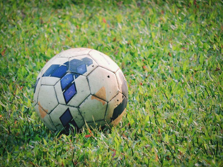 Beautiful stock photos of soccer balls, Ball, Close-Up, Day, Grass