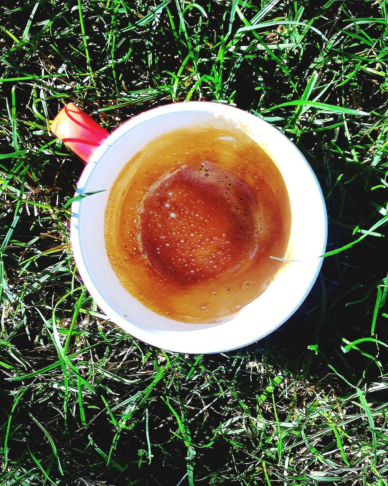 Caffè Uovo Coffee Egg Tondo Cerchio Circle Round Geometria Geometry Drink Bere Marrone Brown Mattina Morning Giardino Garden Erba Grass Colazione Breakfast Serenity Serenità