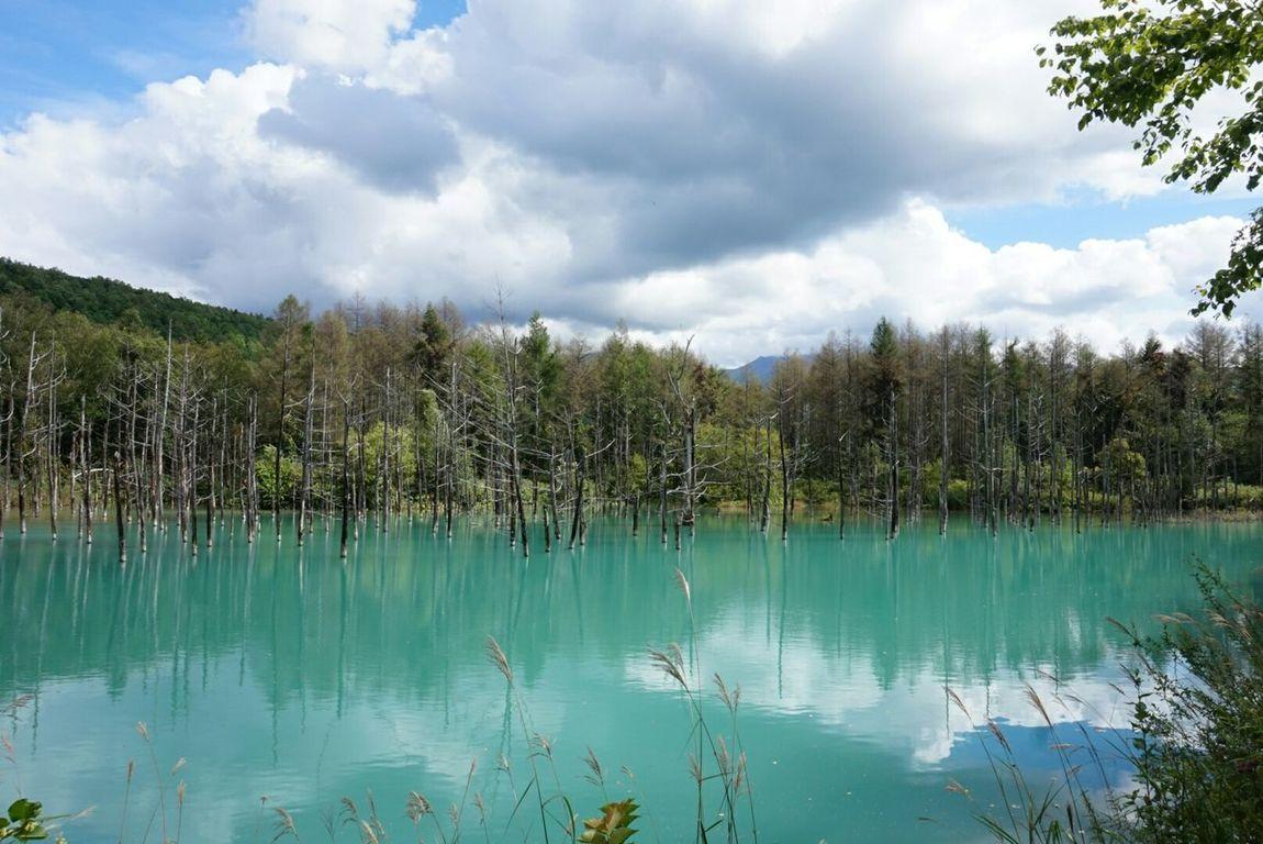 Deep Blue Hokkaido,Japan Beautiful Landscape Wow!! Beautiful Nature Blue Wonderful Day