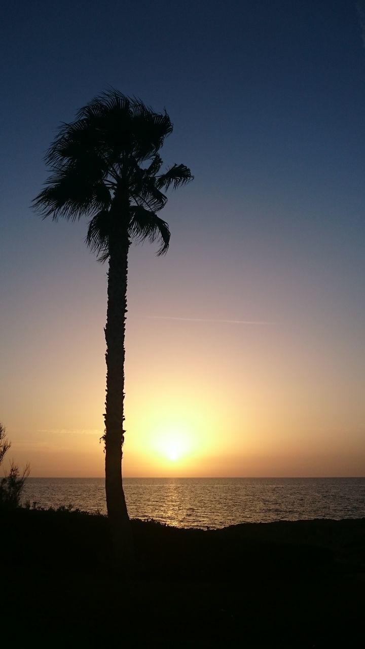 sunset, palm tree, scenics, beauty in nature, silhouette, tree, tranquil scene, sea, tranquility, nature, tree trunk, beach, idyllic, sky, horizon over water, water, outdoors, sun, no people, growth