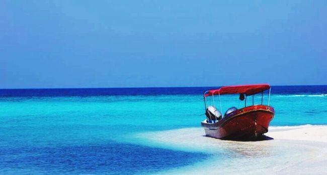 Simplemente un paraiso ? Today's Hot Look Beach Enjoying Life Beautiful Day