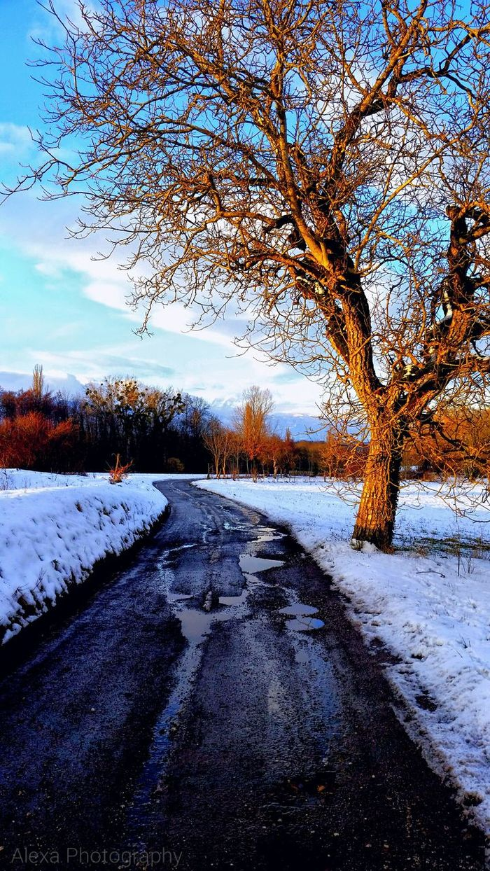 Snow ❄ Bestwinterever ♡♡♡ >< Nature Natural Simplicity