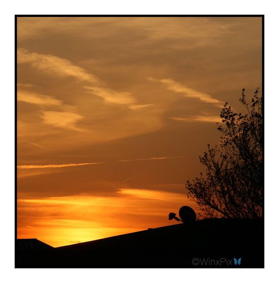 """Yellow Sunset"". Yellow Sunset Yellow Sun Love Sunsets Love Sunset Sunset Sky Sunset #sun #clouds #skylovers #sky #nature #beautifulinnature #naturalbeauty #photography #landscape Eye4photography  Love Photography ♡ Photography Community"