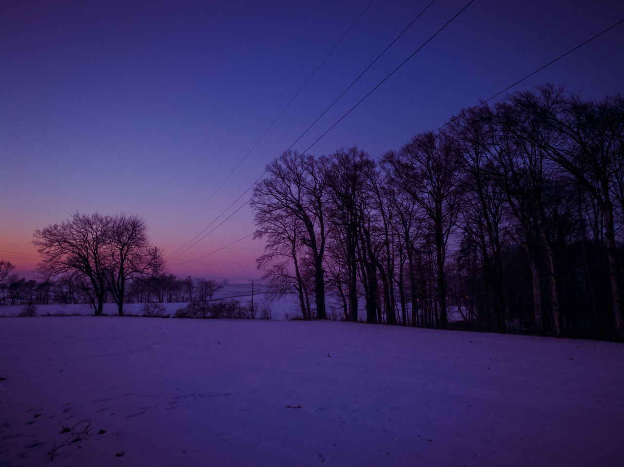 Winter Nature No People Snow Tree Landscape Night Sky Cold Temperature Purple Poland Www.tomaszkucharski.com.pl Outdoors HuaweiP9 Polishphotographer Zima Sunset