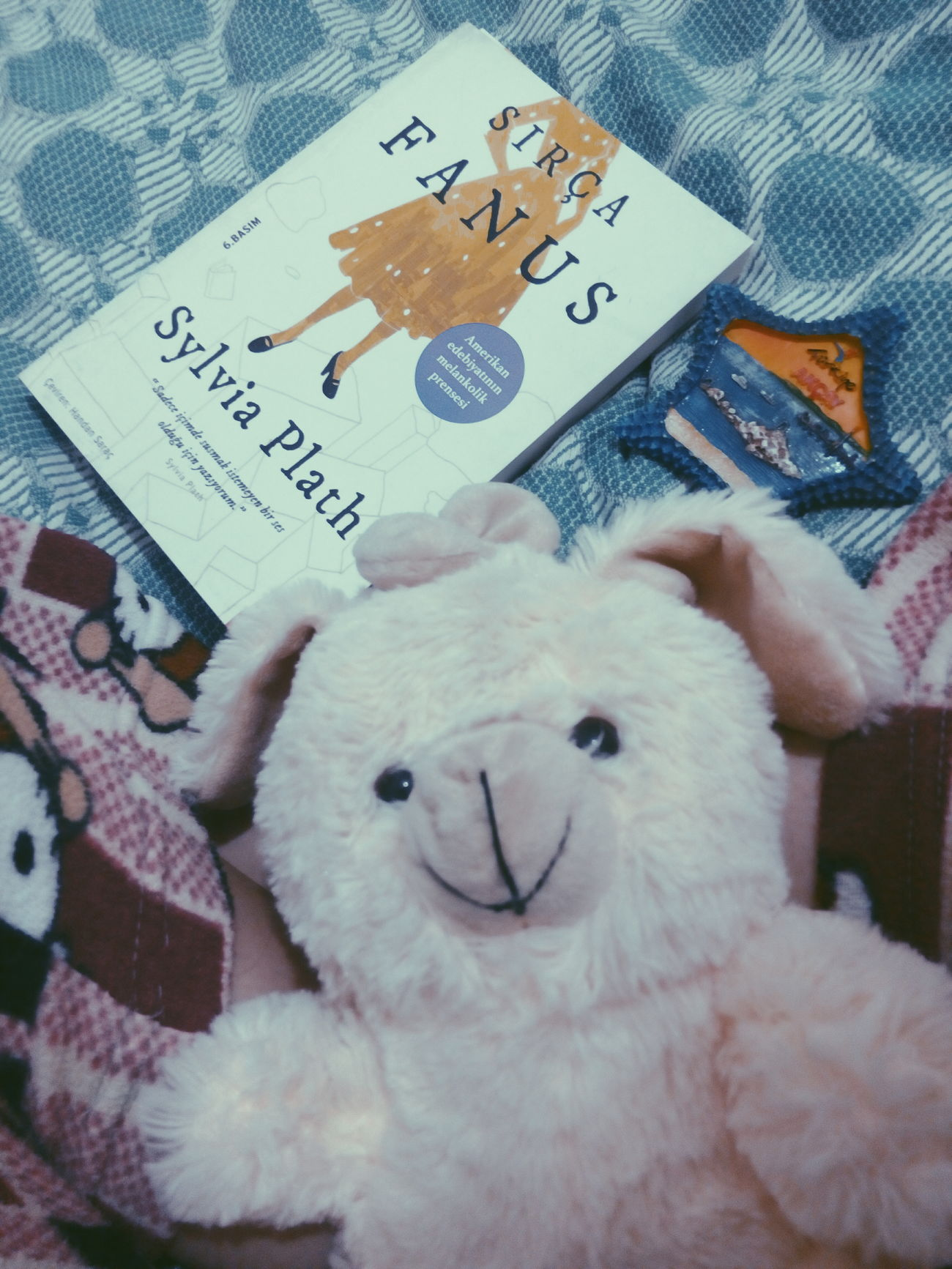 Love ♥ Lovely Star çobanyıldızım Sırçafanus Sylviaplath Sylvia Plath  Thebelljar The Bell Jar Feminism Yeay Good Times Kitap Book Pijamas Bear Ensevilenler