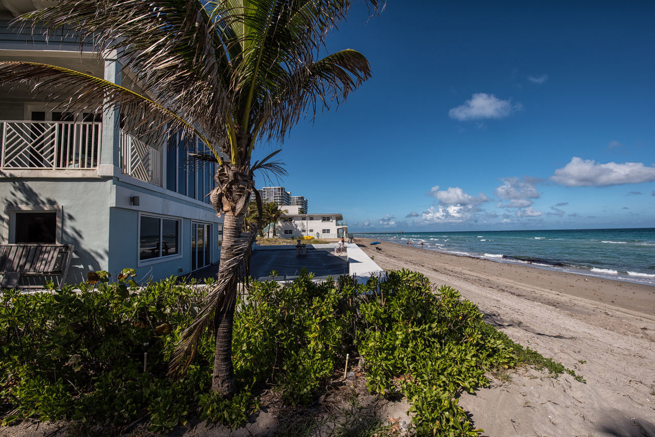 Living Color Architecture Beach Beach Life Blue Building Exterior Day Lifestyle Photography Luxury Nature No People Outdoors Palm Palm Tree Photographyisthemuse Postcard Sea Sky Tourism Tourist Resort Travel Destinations Travel Photography Tree Tropical Climate Vacations Water