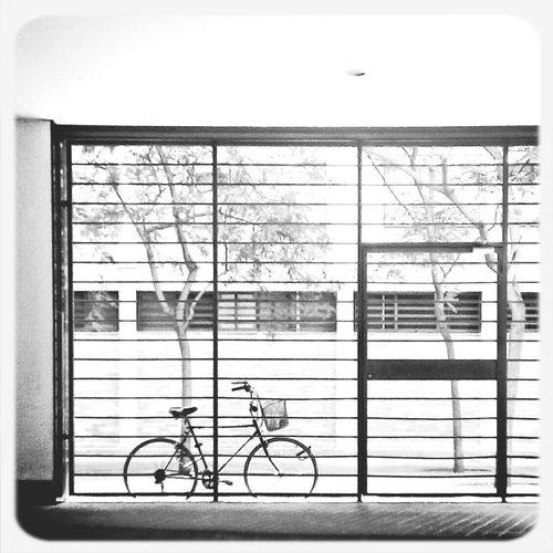 Architecture Blackandwhite Eye4photography  Streetphoto_bw