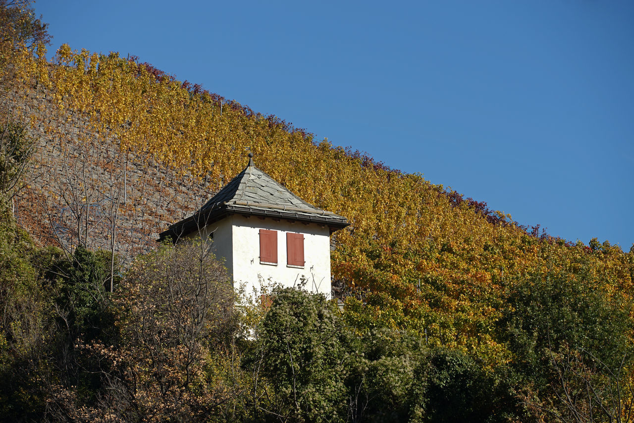 Bei Leuk Architecture Autumn Autumn Colors Beauty In Nature Blue Blue Sky Building Exterior Built Structure EyeEm Best Shots - Nature EyeEm Nature Lover House Landscape Landscape_Collection Landscape_photography Leuk Nature Nature Photography Nature_collection No People Outdoors Schweiz Switzerland Vineyard Wallis