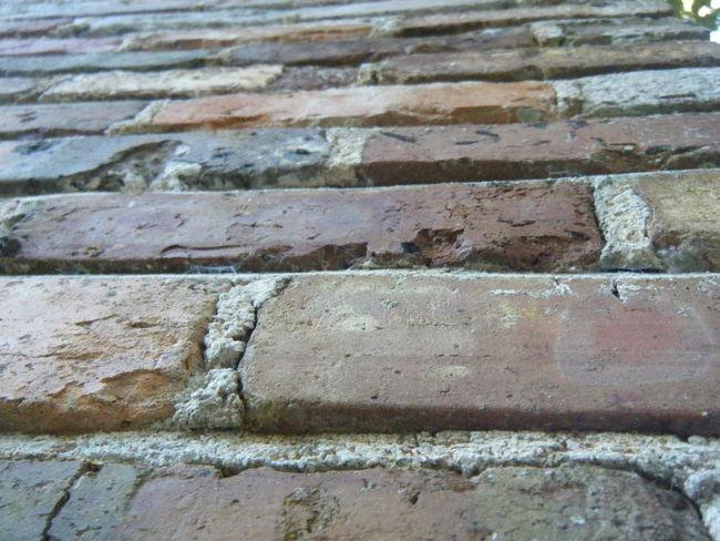 Bricks Brick Wall Brick Wall Upward View Upward Up Wall Red Brown