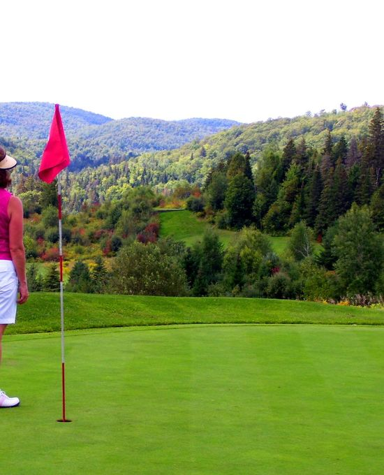 Clear Sky Day Flag Golf Golf Course Golf Flag Golf Swing Golfer Grass Green - Golf Course Green Color Leisure Activity Mountain Golf Course Nature One Person Outdoors Panorama Scenic Golf Course Scenic View Sport Standing Tree Vista