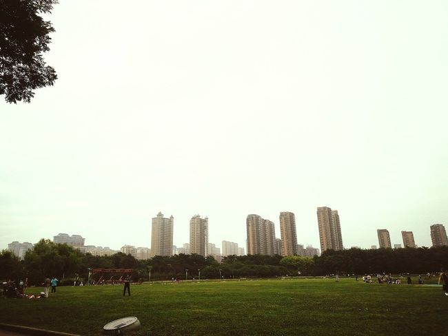 Good morning Skyscraper Urban Skyline City Cityscape Downtown District Grass Architecture Building Exterior Outdoors People Tree Day Sky