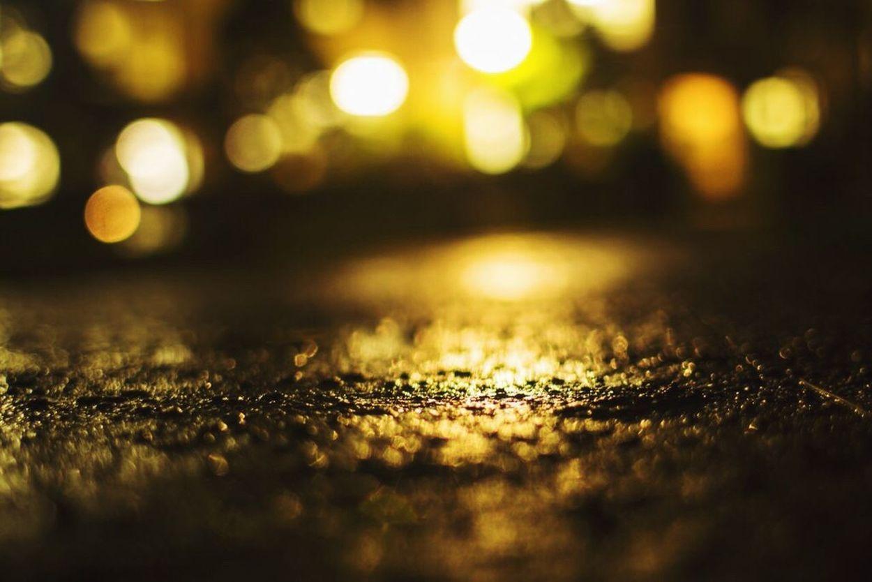 煌めき。 Kwansei Gakuin Rain Coarse Bokeh Defocused Canon Traveling First Eyeem Photo Light