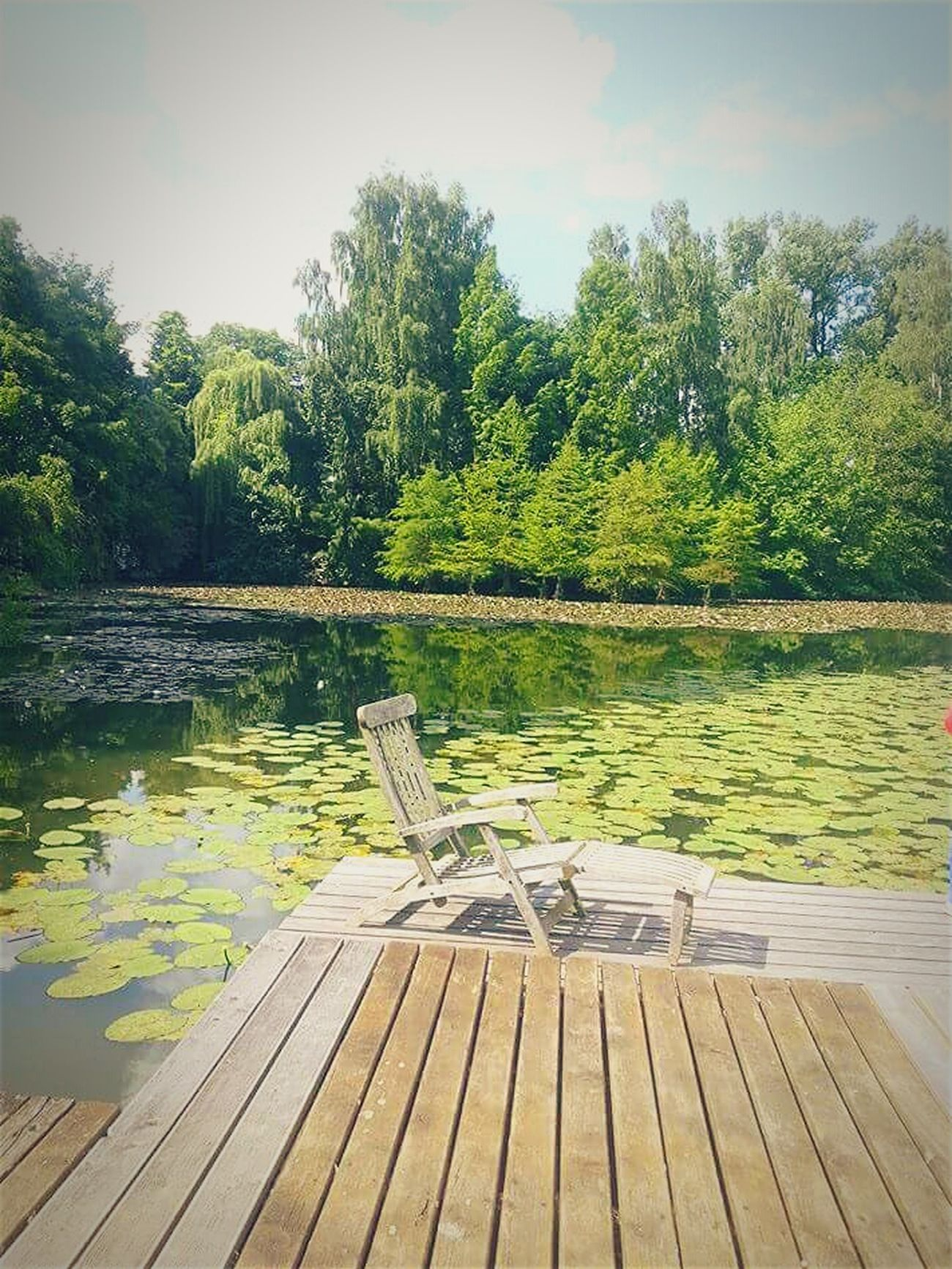 Relaxing Lake View Lovely Place Enjoying The View EyeEm Best Shots - Nature Eye Em Nature Lover Springtime Lakeside